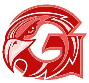 Red Falcons Logo